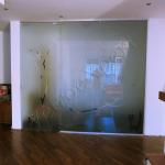 Porta in vetro e Parete divisoria - Roma - VetroeXpert - Porte in vetro su misura e Pareti divisorie